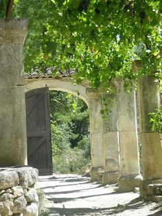 Pillars and an arch columns along the drive way between the trees? love it!