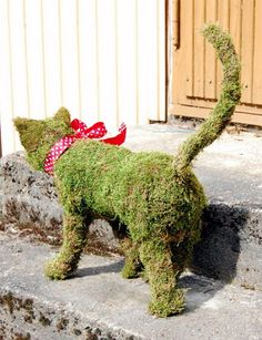 Pin by Katchin on Topiary Garden Art Creations ~ Mostly Animals - Garten und Pflanzen - Chicken Wire Art, Chicken Wire Sculpture, Topiary Garden, Moss Garden, Backyard Projects, Garden Projects, Shabby Chic Patio, Fleur Design, Moss Art