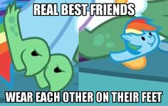 Rainbow dash wears turtle slippers, and her turtle wears Rainbow dash slippers. My Little Pony Poster, My Little Pony Comic, My Little Pony Drawing, My Little Pony Pictures, Mlp My Little Pony, My Little Pony Friendship, Mlp Memes, My Little Pony Wallpaper, Little Poni