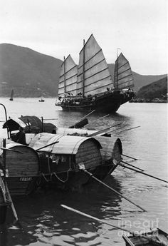 "Hong Kong...These are the ""junks"", the boats.➰"