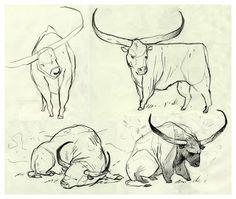 . Taurus Love, Wonderful Picture, Signs, Illustration Art, Illustrations, Mythology, Moose Art, Tattoo Ideas, Drawings