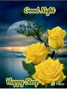 Good Night Sister, Good Night All, Good Night Image, Good Morning Sunday Images, Good Morning Roses, Good Afternoon, Good Night Qoutes, Night Quotes, Good Night Greetings