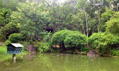 Sơn Trà được ví như hòn ngọc xanh giữa lòng thành phố Đà Nẵng nếu tới du lịch Đà Nẵng mà không tới thăm Sơn Trà thì thật đáng tiếc.