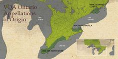 Grape production in Ontario originates from three designated Viticultural Areas: Niagara Peninsula, Lake Erie North Shore, and Prince Edward County. There are approximately 17,000 acres under vine in these three areas. Grape Growers of Ontario are proud to grow quality grapes within these three regions.