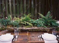 "this is such a beautiful MOSSY and FERN FILLED potted plant tablescape for an outdoor wedding (or any garden party)!! this link shows directions...""My sister and I made the hypertufa pots for each table and Katie potted beautiful, unruly arrangements in them- which I proudly still nurture & keep today!"""