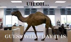 Guess what day it is!