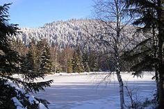 Dans les Vosges, le Lac de Lispach
