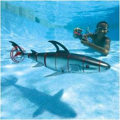 There's a shark in the pool! Don't worry... it's just a robot :)