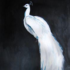 White Peacock II