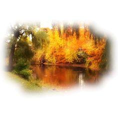 Tubes paysages automne