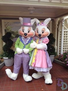 Magic Kingdom Welcomes Mr and Mrs Bunny Starting This Sunday - Doctor Disney