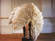 Rebecca Horn, The Feathered Prison Fan, 1978
