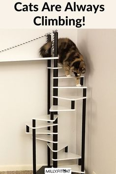 Take the stairs kitty! Your cat might need their own staircase. The MillyFitcat Spiral Cat Tree can give kitty a good workout day or night. The unique design of this Cat Furniture creation makes it fun to climb as well as interesting to watch the action also. A work of art and a Cat Toy combined! Get your kitty moving. Click or Claw over to our Etsy Shop for a full description and available sizes. Meow! #cattree #cattower #catfurniture #moderncat