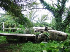 Lost WWII allied aircraft in New Guinea