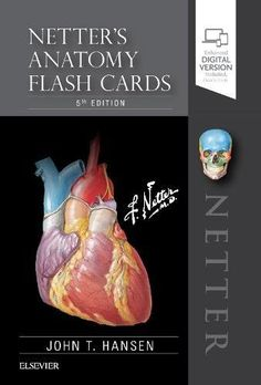 Thieme atlas of anatomy neck and internal organs pdf download e netters anatomy flash cards 5e netter basic science learn the essential anatomy you need to know quickly and easily fandeluxe Choice Image