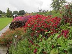 Image result for mixed borders wisley