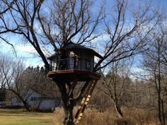 Check out this gorgeous Wisconsin treehouse that one of our readers shared with us! --> http://hgtvgardens.com/photos/wisconsin-treehouse-0000013d-12c1-dff5-a7fd-76ff7a650000?soc=pinterest