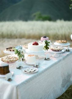 cake and pie table... display the label cards