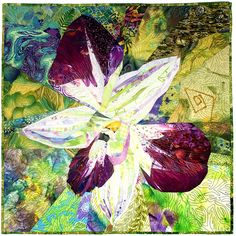 Orchid by Margo Fiddes