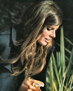 Katharine Ross Katherine Ross, Julie Christie, Biography, Dreadlocks, Movie, Star, Lady, Hair Styles, Makeup