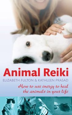 Animal Reiki: How to use energy to heal the animals in your life (English Edition)