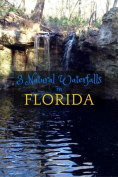 Visit 3 Natural Waterfalls in Florida | Most people have no clue, but there are three natural waterfalls in Florida you can visit not too far off the beaten path: Falling Creek Falls, Falling Waters State Park, and Devil's Millhopper Geological State Park. Sponsored by VISIT FLORIDA.