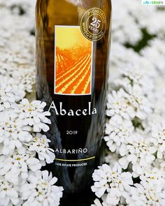 Abacela Winery Abacela Profile Pinterest
