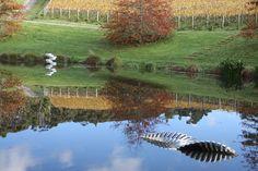 Jahnke.. Brick Bay Wines - Sculpture Trail
