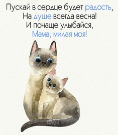 Happy B Day, 8th Of March, My Friend, Happy Birthday, Love You, Presents, Teddy Bear, Words, Drawings