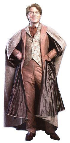 Gilderoy Lockhart [Harry Potter and the Chamber of Secrets]