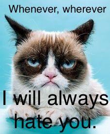 #humor, #cats,#grumpy cat, #quotes, #e-cards