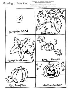 pumpkin growth sequencing sheet (halloween) Repinned by SOS Inc. Resources @sostherapy.