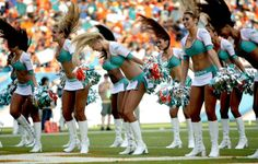 Miami Dolphins cheerleaders in action during a game between the Dolphins and Carolina Panthers on Nov. 24, 2013. (Bill Ingram/Palm Beach Post)