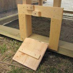 Open Chicken Coop Door with Ramp