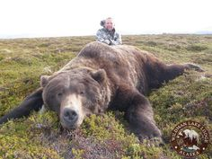 Go Bear Hunting- bucket list Big Game Hunting, Bear Hunting, Trophy Hunting, Hunting Season, Hunting Stuff, Alaska Hunting, Hunting Pictures, Fish Camp, Wildlife Nature