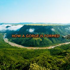 It is a testament to the power of nature and the evolution of the world as to how a Gorge is formed and Oribi Gorge is proof of that. Wild 5 Adventures is situated on the edge of world renowned Oribi Gorge. People travel from all around the world to come and enjoy the breathtaking … Africa Travel, Amazing Photography, Did You Know, South Africa, Evolution, Around The Worlds, Website Link, Adventure, Mountains