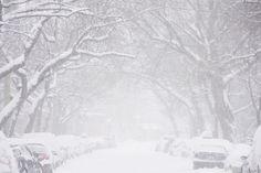 Inspirante au quotidien - crédit photo : Veronique Jean Exposition Photo, Winter White, Place, Marie, Photos, Images, Snow, Outdoor, City