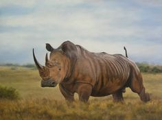Oil Painting - All Tanked Up - Rhino by Sonia Sawyer