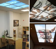 Heracles Almelo, AC restaurants, Ceiling66