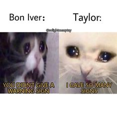 Taylor Swift Jokes, Taylor Swift Fan Club, Taylor Swift Music, Taylor Alison Swift, Stupid Funny Memes, Funny Relatable Memes, Music Memes, Reaction Pictures, My Idol