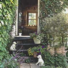 Put some spring in your steps and in your planting beds, patios, and pots, too