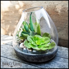 "Medium Glass and Stone Terraza Terrium 10"" X 10.5"" height; $59.85 at hooksandlattice.com"