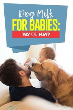 Dog Milk for Babies: Dog Milk for Babies: Good or Bad? Dog Milk, Dogs And Kids, Dog Care, Newborns, Training Tips, Dog Owners, Best Dogs, Weird, Puppies