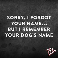 Sorry, I forgot your name... but I remember your dog's name