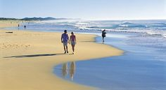 A great tour to Fraser Island. Drive along 75 Mile Beach, swim in McKenzie Lake & be with nature. Book with Tours to Go. Coast Australia, Australia Living, Most Beautiful Beaches, Beautiful World, Places To Travel, Places To See, Sunshine Coast, Sunshine State, Fraser Island