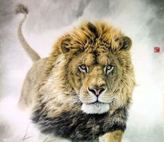 gorgeous watercolor paintings of animals | Lion,98cm x 98cm(38〃 x 38〃),4445002-z