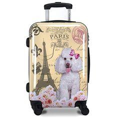 Best Travel Luggage, Small Luggage, Buy Luggage, Carry On Luggage, Luggage Sets, High School Bags, Designer Luggage, Hardside Luggage, Carry On Suitcase