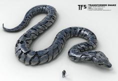 R_TRANSFORMERSNAKE_TransformerSnakeV1_FT.jpg