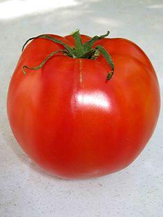 Tomato Season Around the Corner!