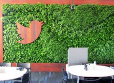 GSky Unveils Lush Living Wall at Twitter's San Francisco Headquarters